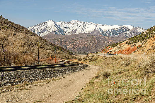 Railroad Tracks with an S-Curve by Sue Smith