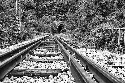 Rails by Srdjan Fesovic