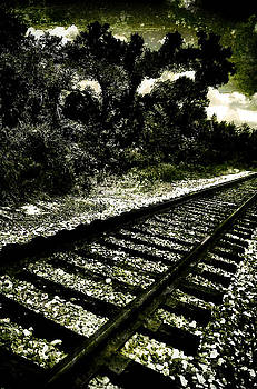 Railway by Gulf Island Photography and Images