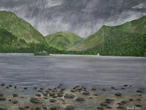 Rain Over Ullswater by Ronald Haber