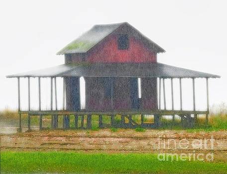 Rain Storm by Raymond Earley