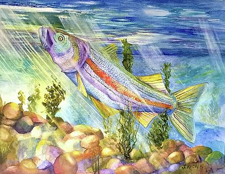 Rainbow Bass by Jane Ricker