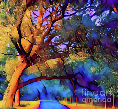Rainbow Forest by Gayle Price Thomas