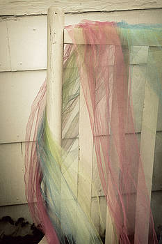 Rainbow of colors by Terry and Brittany Sprinkle