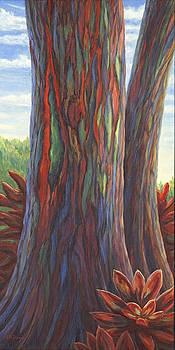 Rainbow Tree, Hawaii by Elaine Farmer