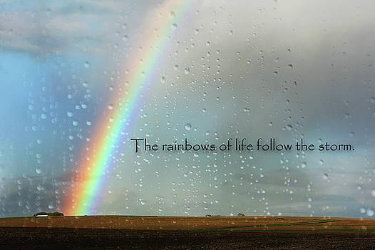 Rainbows Of Life by Vicki McLead