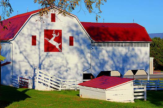 Raindeer Barn by Sheryl Bergman