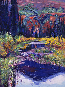 Raindrop Creek by David Lloyd Glover