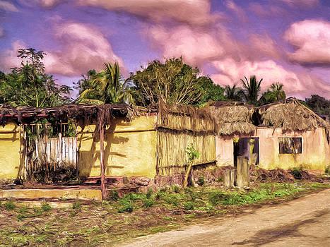 Dominic Piperata - Rainforest Morning
