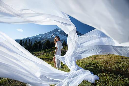 Rainier Ribbons by Dario Infini