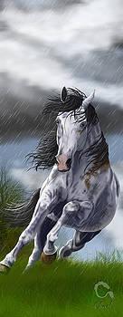 Rainstorm by Charlotte Grub