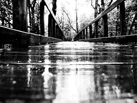 Take a walk with me in the rain by Valeria Donaldson
