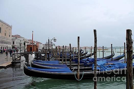 Rainy day in Venice by Irina Hays