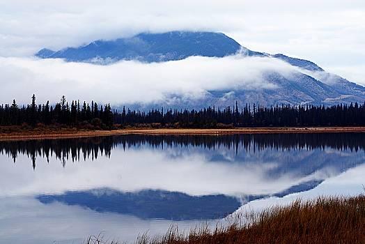 Larry Ricker - Rainy Day Reflections