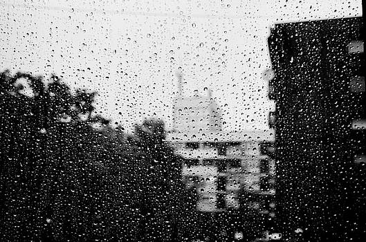 Rainy Day by Srdjan Fesovic