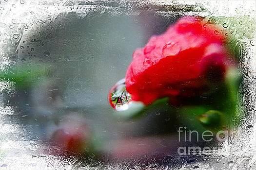 Rainy day by Yumi Johnson