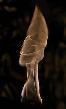 Not The Bottle Top by Steven Poulton