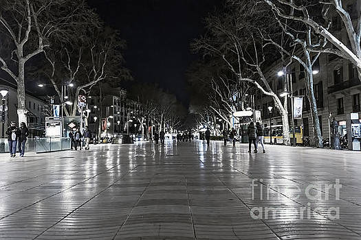 Svetlana Sewell - Rambla at Night