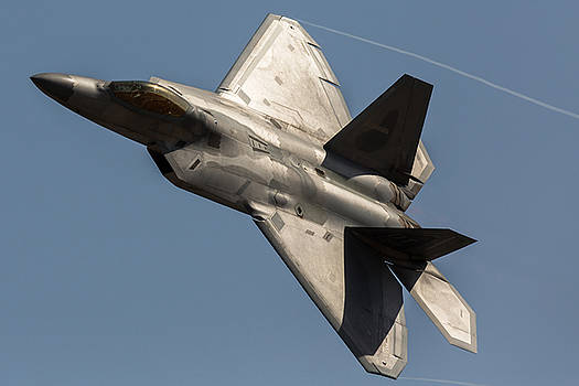 Raptor Vortices by John Daly