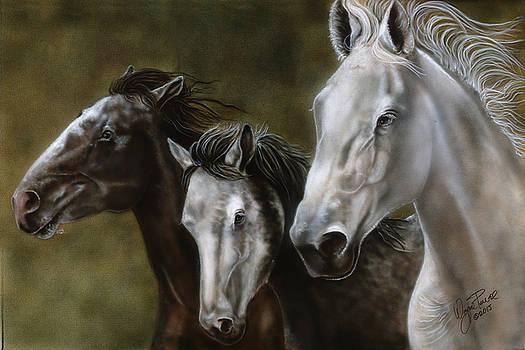 Rare Breeds Running by Wayne Pruse