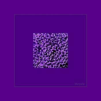 Rare flower by Marija Djedovic