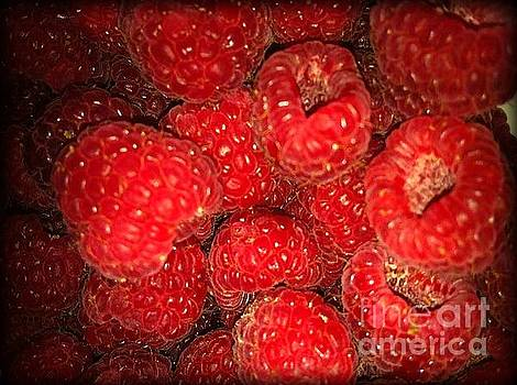 Raspberries by Sylvie Leandre