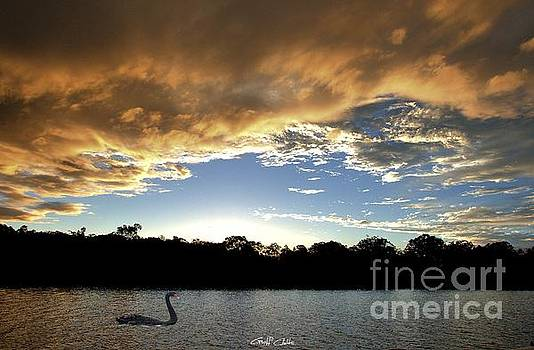 Rathmines Sunset with Swan. Original exclusive photo art. by Geoff Childs