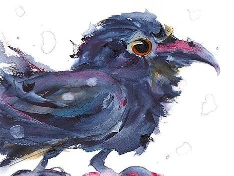 Raven 3 by Dawn Derman