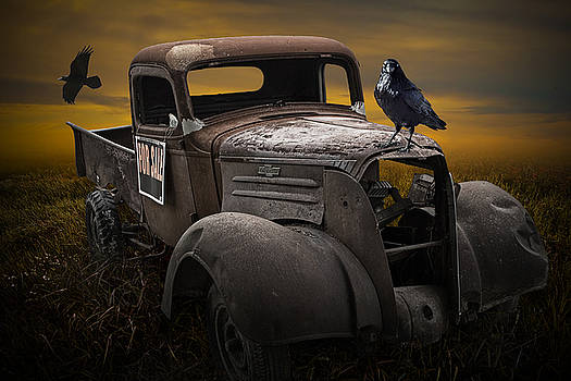 Randall Nyhof - Raven Hood Ornament on Old Vintage Chevy Pickup Truck