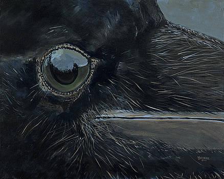 Raven's Eye by Les Herman