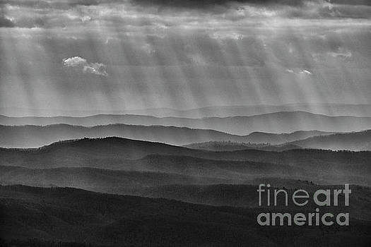 Rays and Ridges by Thomas R Fletcher