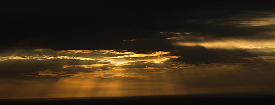 Rays by Bun Lee