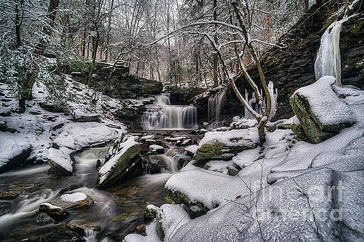 RB Ricketts Falls and Surrounds, 2017.01.24 by Aaron Campbell