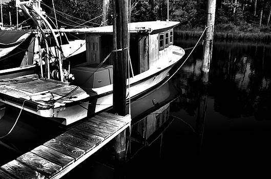 Ready to Fish by Gulf Island Photography and Images