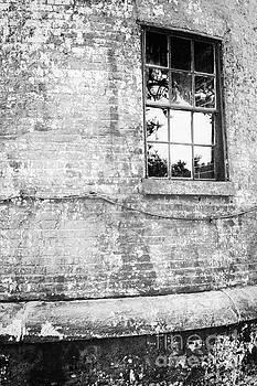 Lisa McStamp - Rear Window