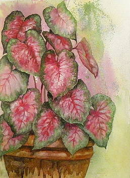 Red and Green for Susan by Wendy Hill