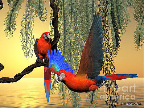 Corey Ford - Red and Green Macaws