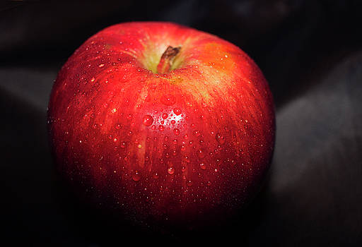 Red Apple by Tammy Chesney