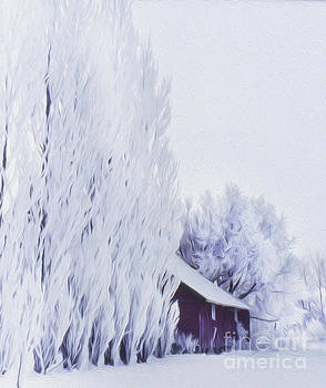 Red Barn After A Fresh Snowfall by Greg Kopriva