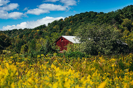 Red Barn In Early Autumn by Shane Holsclaw