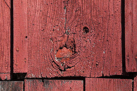 Red Barn Wood by David Letts