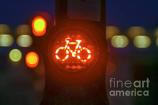 Patricia Hofmeester - Red bicycle traffic light