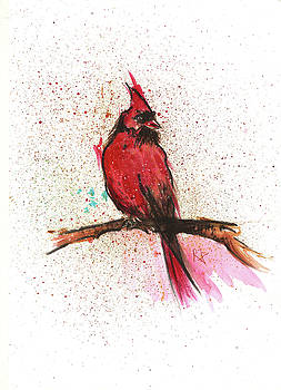 Red Bird by Remy Francis