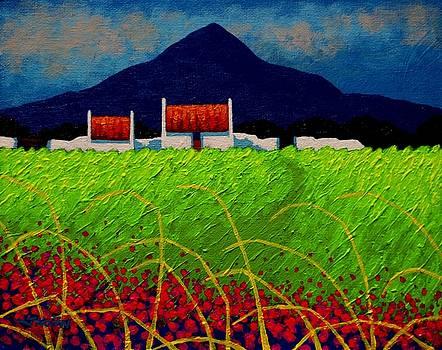 Red Door Meadow by John  Nolan