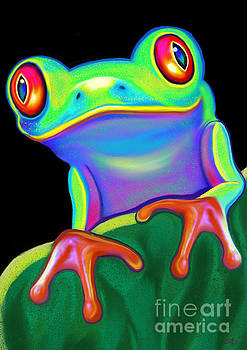 Nick Gustafson - Red Eyed Tree Frog
