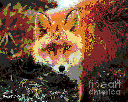 Red Fox Abstract by Sharon K Shubert