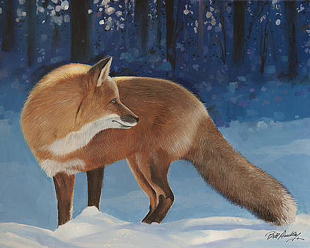 Red Fox by Bill Dunkley