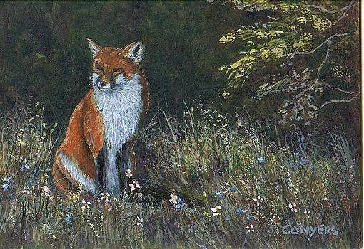 Red Fox by Peggy Conyers