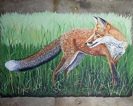 Red Fox by Sandra Wilson