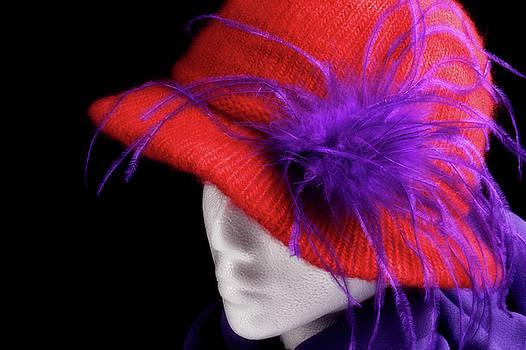 Red Hat by Vicki McLead
